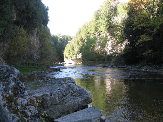 Elora, Canada : In the gorge at Irvine Creek