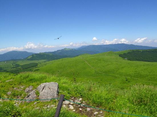 Chino, Japan: 空が広い!  頂上にて