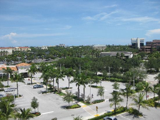 Hilton Garden Inn Palm Beach Gardens: view in front of hotel