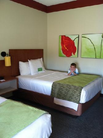 La Quinta Inn & Suites Dallas Plano West: room