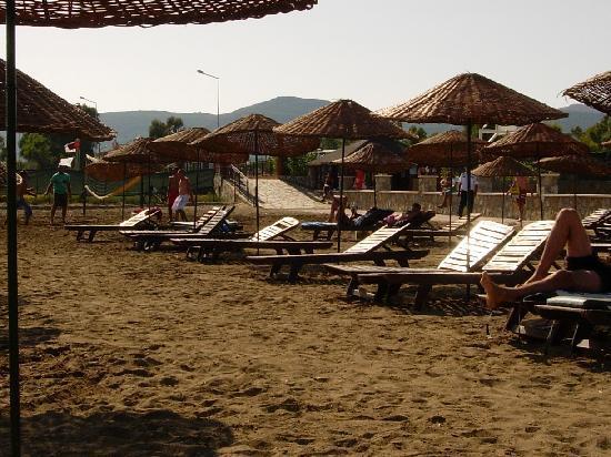 Asa Club Holiday Resort: Transats cassés sur la plage, avec clous rouillés qui dépassent!