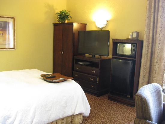 Hampton Inn Americus: Queen Room