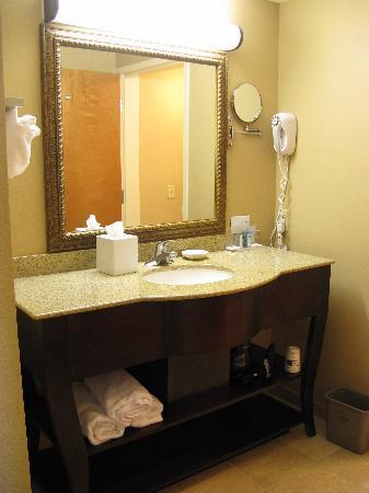 Hampton Inn Americus: Vanity area
