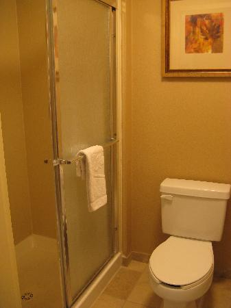 Hampton Inn Americus: Shower Bath