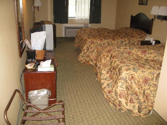 Super 8 Henrietta/Rochester Area : Room (photo taken after being used over night)