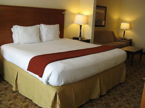 Holiday Inn Express Hotel & Suites Phenix City-Fort Benning Area : King Bed