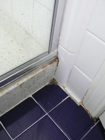 Parker Guest House : Salle de bain 3
