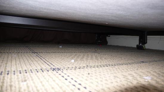 Parker Guest House : Sous le lit 1