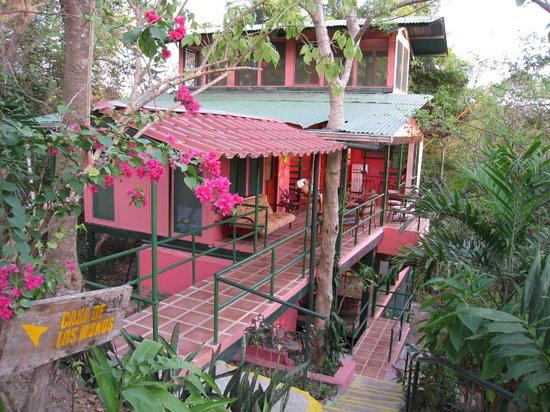 Nosara B&B Retreat: Tree House