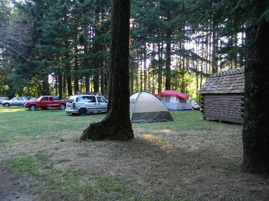 Cascade Locks KOA : tent sites are not defined