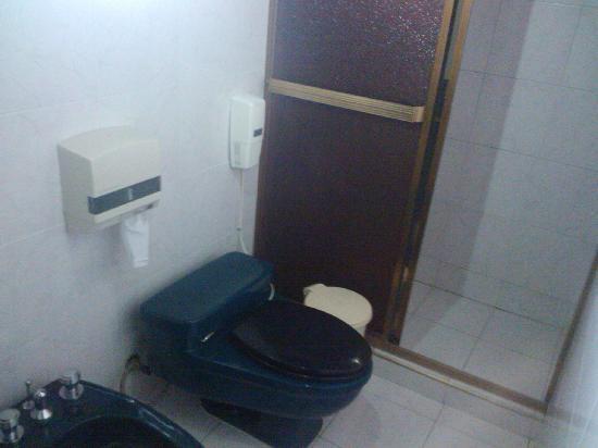 Hotel El Porton: Baño 1