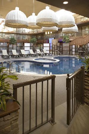 Delta Calgary South Hotel: Atrium Swimming Pool and Hot Tub