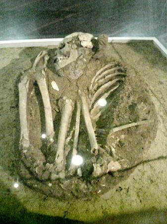 Tibes Indian Ceremonial Center: skeleton found at the ceremonial center