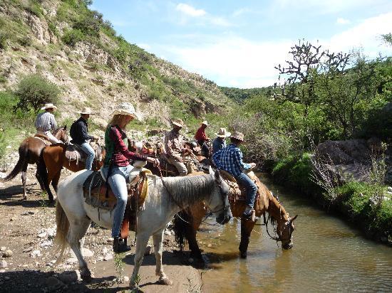 Rancho Xotolar: river in the canyon