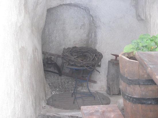 Santorini Wine Tour: basket vine
