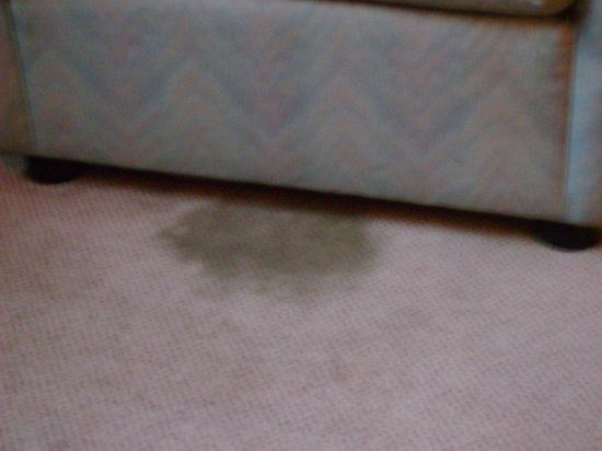 Astoria Hotel: carpet stain