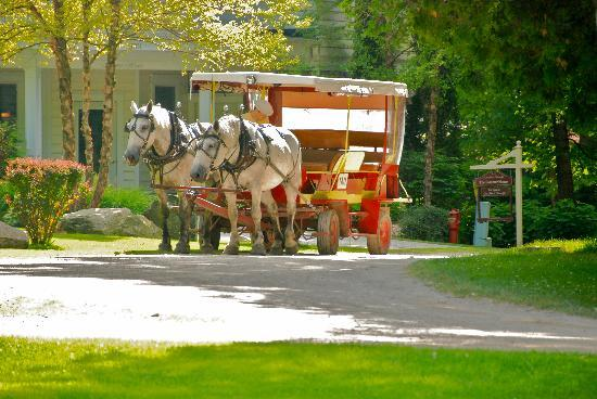 The Inn at Stonecliffe: taxi