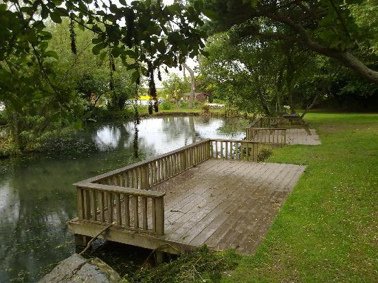 Golden Coast Holiday Village: one of the 3 lakes on site nice for a walk