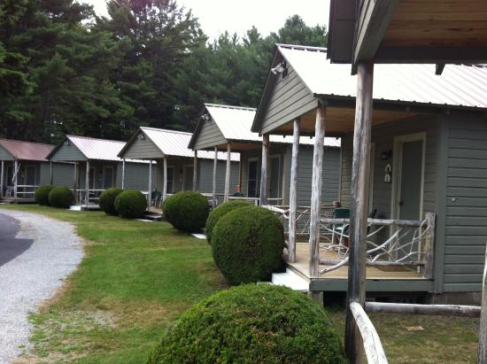 Pine Tree Motel & Cabins: Cabins