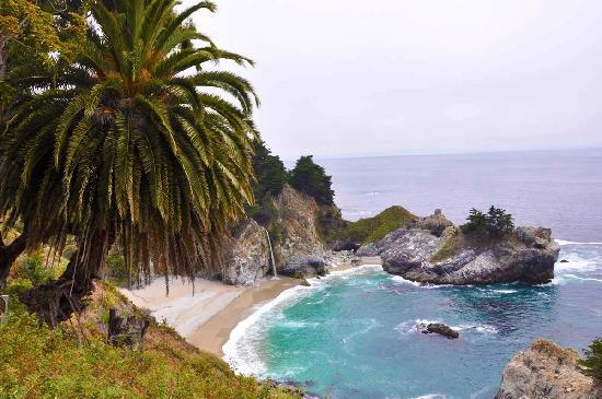Julia Pfeiffer Burns State Park 사진