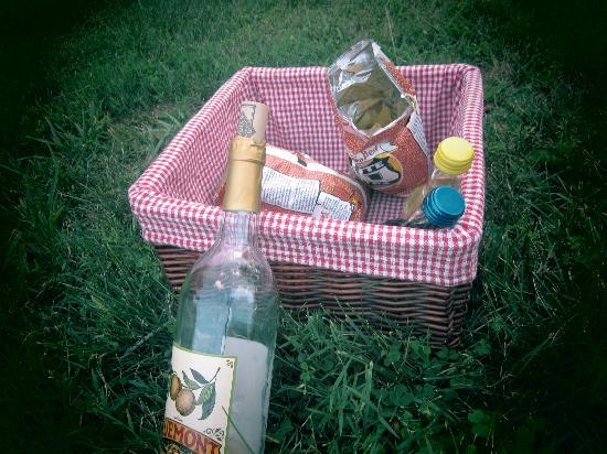 Rosemont Manor: Picnic basket they made for us.. wine from a vineyard near by