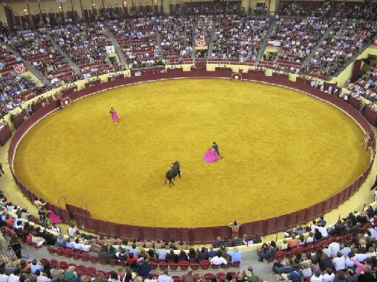 Campo Pequeno : Spanish stly bullfight.