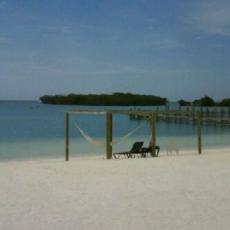 Turquoise Bay Dive & Beach Resort: the view