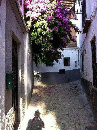 Albayzin: a corner of the alley