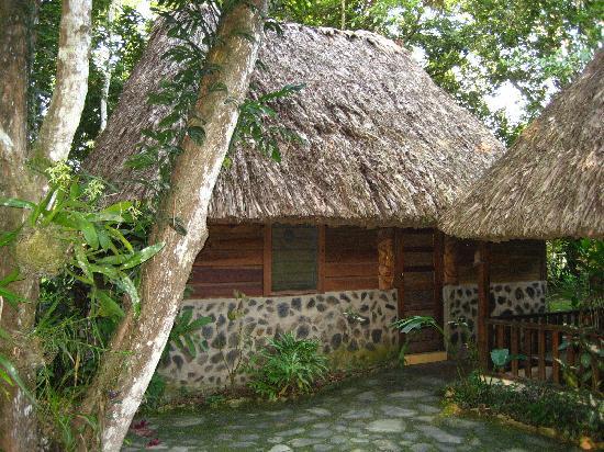 Cohune Palms River Cabanas: our little bungalow
