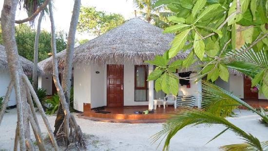 Bungalow - Picture of Velidhu Island Resort, Velidhoo ...