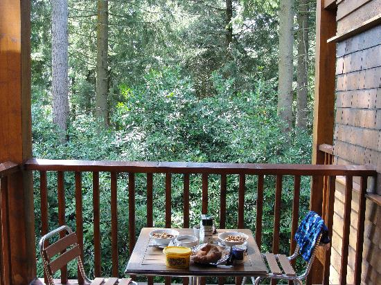 Center Parcs Longleat Forest: Pinewood balcony view