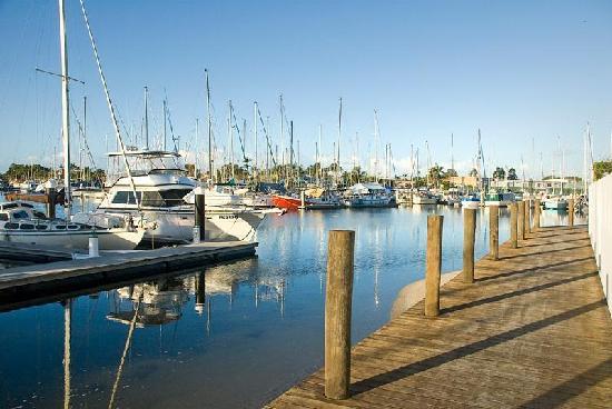 Bluewater Point Resort: Bluewater Marina