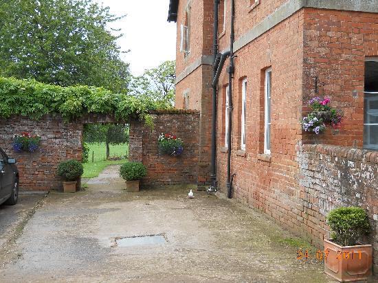 Newcourt Barton: Verso il giardino