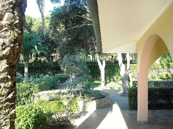 Villa La Pineta: GIARDINO