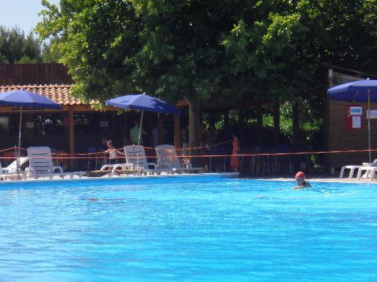 26bf446442947 piscina e relax - Foto di Villaggio Club Albatros