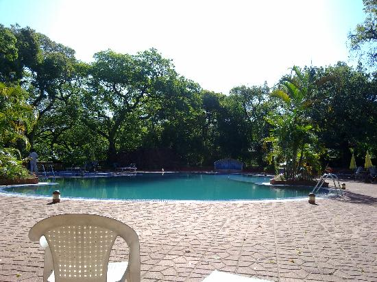 Swimming Pool Picture Of Hotel Lake View Mahabaleshwar Tripadvisor