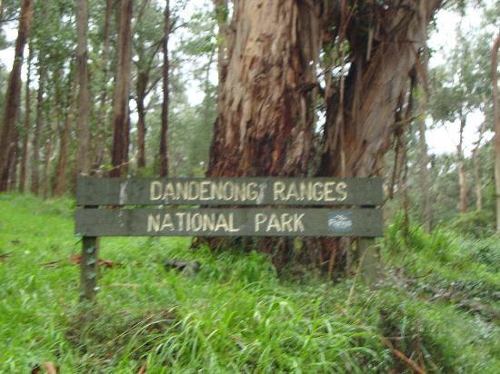 Dandenong, ออสเตรเลีย: National park