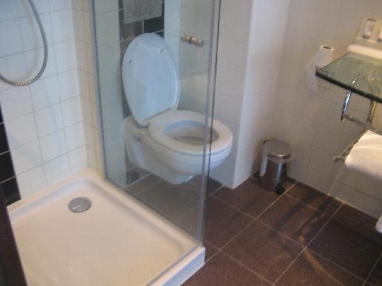 โรงแรมเวสท์คอร์ดซิตี้เซ็นเตอร์ อัมสเตอร์ดัม: Bathroom - pic 7