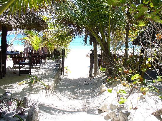 Dos Ceibas Eco Retreat: entry to beach