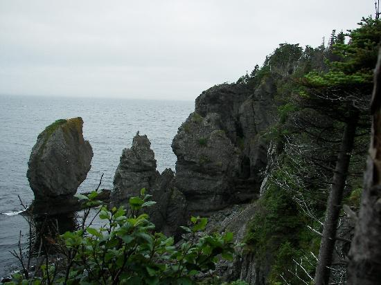 Port Rexton, Canada: Sea stacks