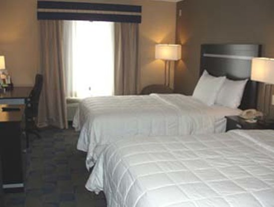 Comfort Inn & Suites / Wolf Road: Two Double Beds