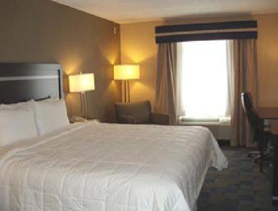 Comfort Inn & Suites / Wolf Road: King Size Rooms