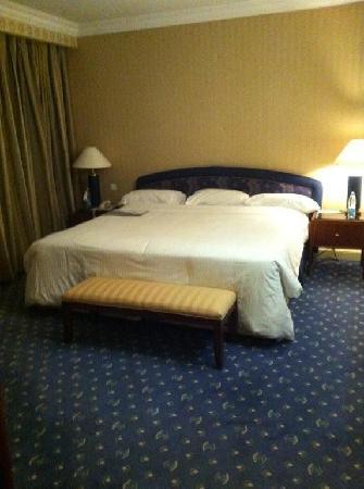 Le Meridien Heliopolis: room 2