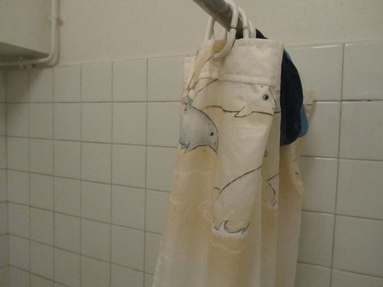 Hotel Eden Lac: dirty shower curtain
