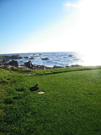 Monterey, CA: 17