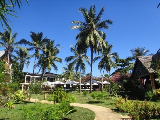 Royal Beach Hotel : outside 2
