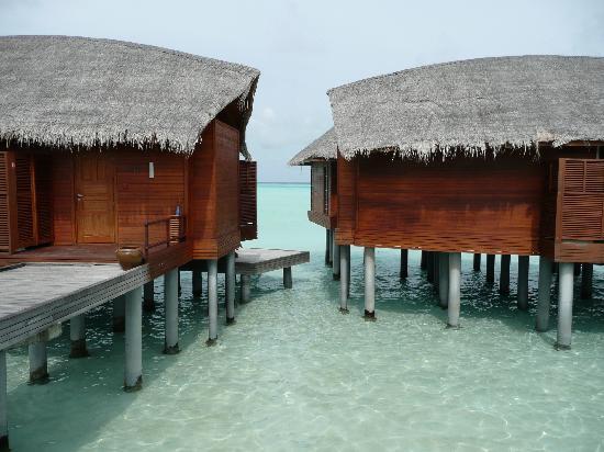 maison sur pilotis photo de anantara dhigu maldives. Black Bedroom Furniture Sets. Home Design Ideas