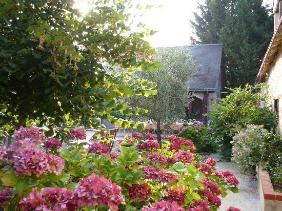 Chambres d'Hotes de Charme Les Bournais: Le jardin