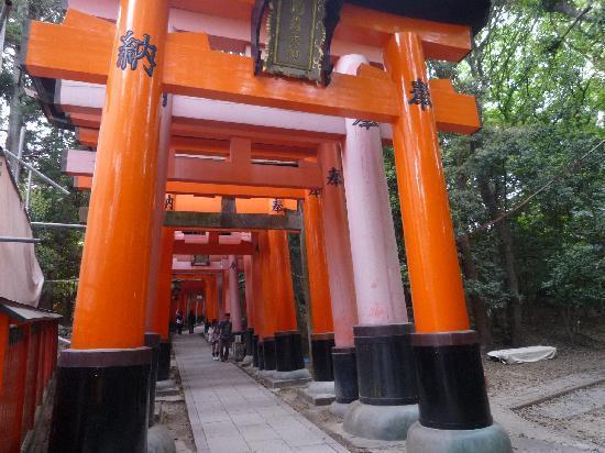 ศาลเจ้าฟูชิมิ อินาริ: 鳥居
