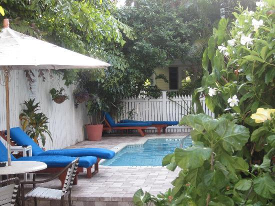 The Weatherstation Inn : Cute little pool area